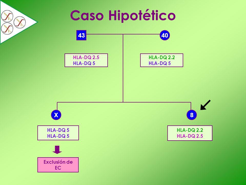 40 X 43 Caso Hipotético Exclusión de EC 8 HLA-DQ 5 HLA-DQ 2.5 HLA-DQ 5 HLA-DQ 2.2 HLA-DQ 5 HLA-DQ 2.2 HLA-DQ 2.5