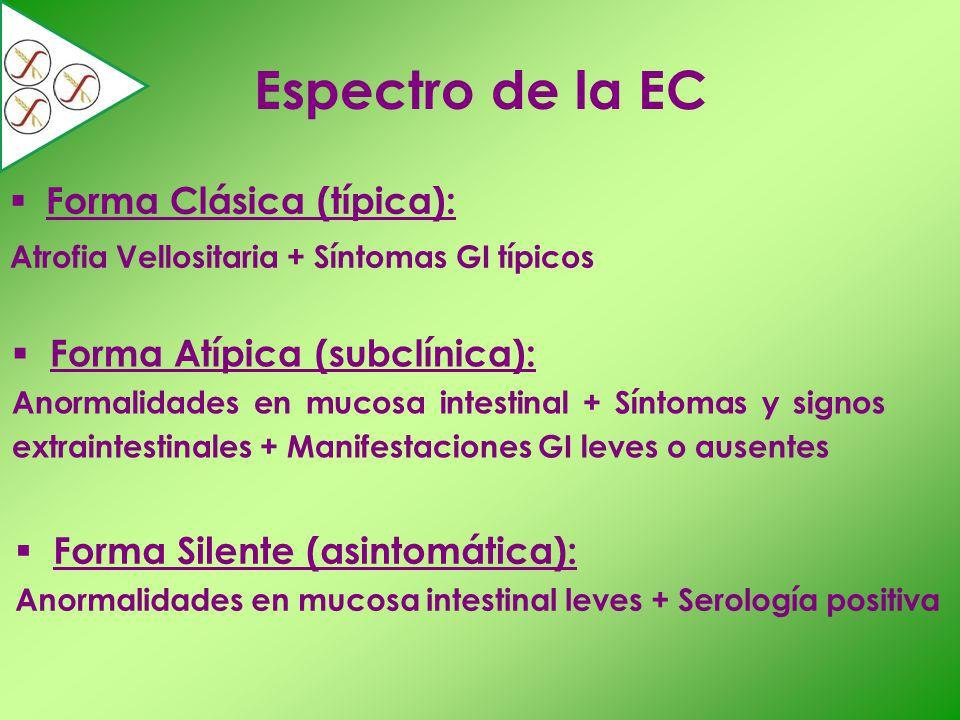 Espectro de la EC Forma Clásica (típica): Atrofia Vellositaria + Síntomas GI típicos Forma Atípica (subclínica): Anormalidades en mucosa intestinal +