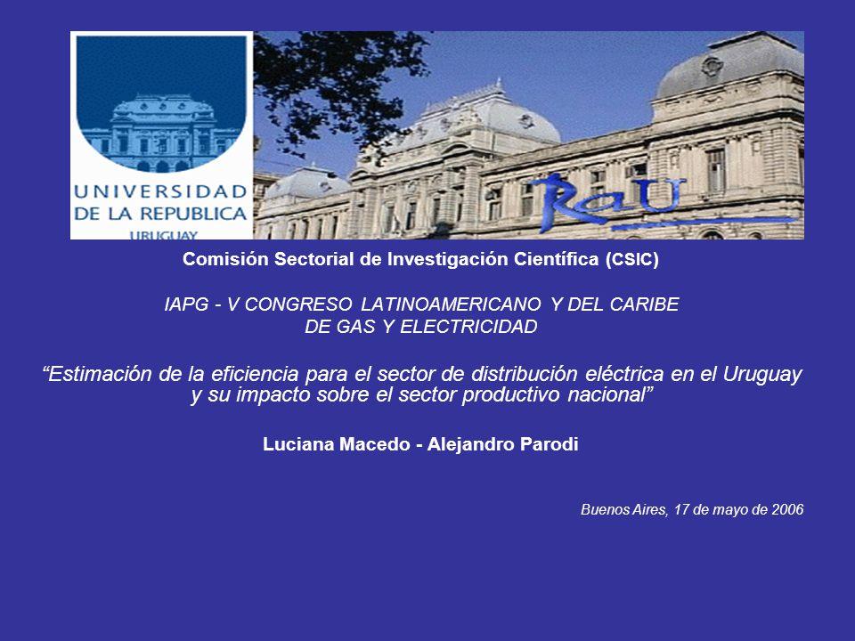Comisión Sectorial de Investigación Científica ( CSIC ) IAPG - V CONGRESO LATINOAMERICANO Y DEL CARIBE DE GAS Y ELECTRICIDAD Estimación de la eficiencia para el sector de distribución eléctrica en el Uruguay y su impacto sobre el sector productivo nacional Luciana Macedo - Alejandro Parodi Buenos Aires, 17 de mayo de 2006