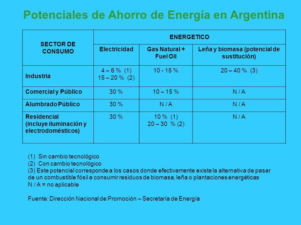 Potenciales de Ahorro de Energía en Argentina SECTOR DE CONSUMO ENERGETICO ElectricidadGas Natural + Fuel Oil Leña y biomasa (potencial de sustitución