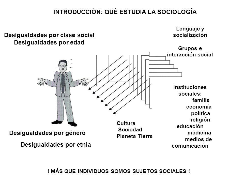 Desigualdades por clase social Desigualdades por edad Desigualdades por género Desigualdades por etnia Lenguaje y socialización Grupos e interacción s