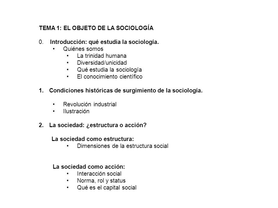 La sociedad como estructura Enorme sistema social donde individuos, organizaciones y grupos se relacionan entre sí.