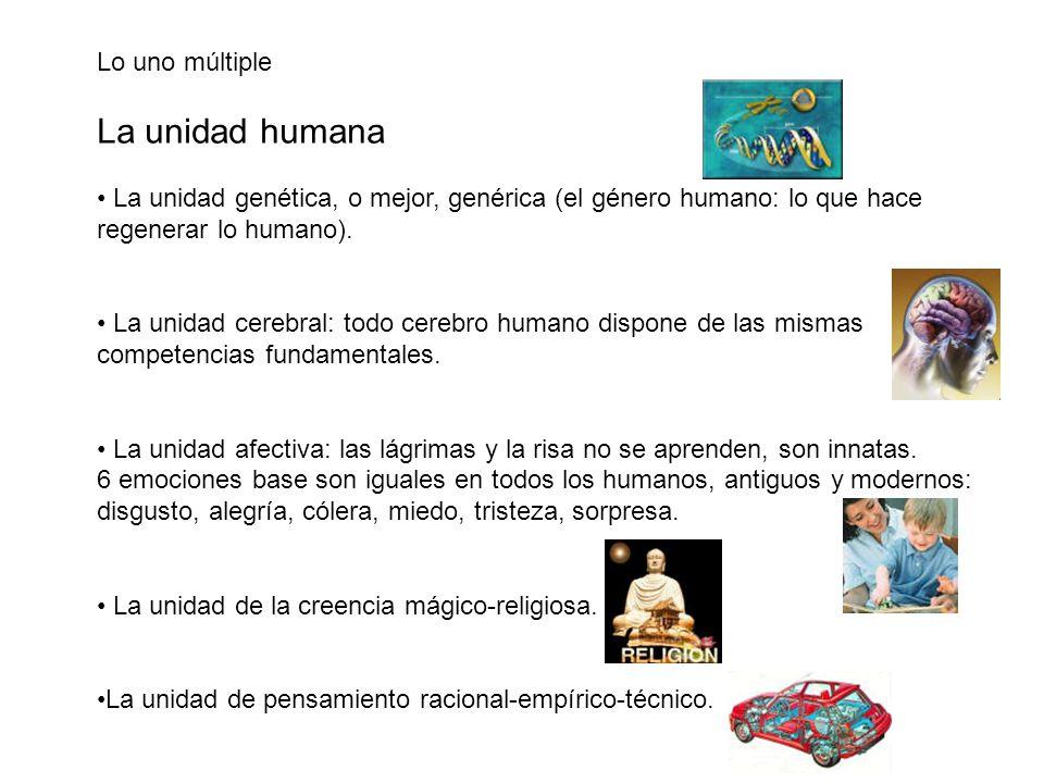 Lo uno múltiple La unidad humana La unidad genética, o mejor, genérica (el género humano: lo que hace regenerar lo humano). La unidad cerebral: todo c