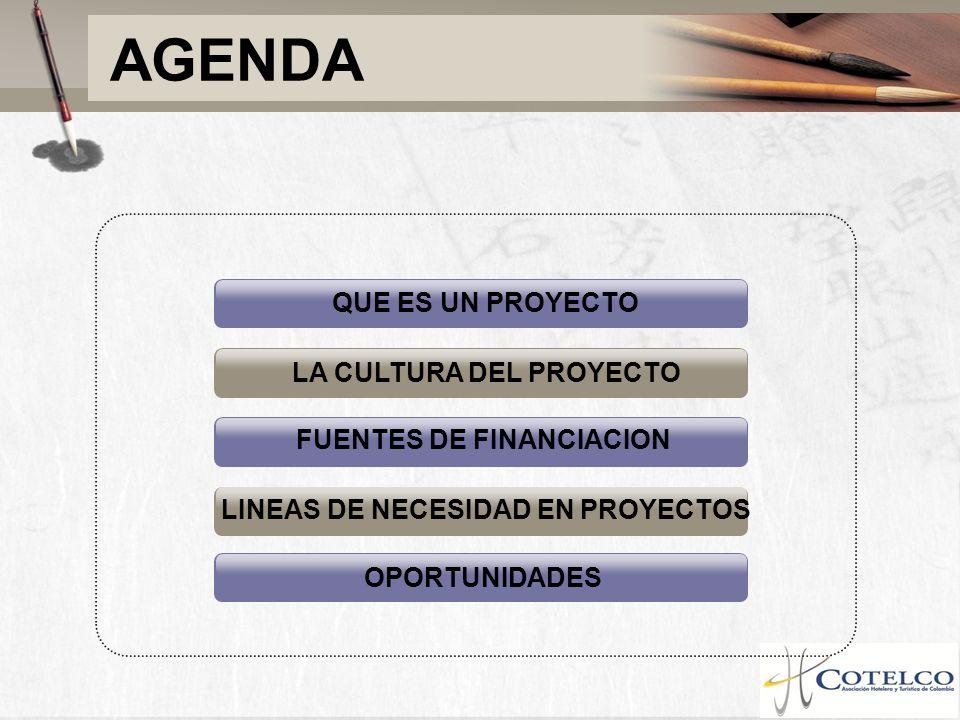 LA CULTURA DEL PROYECTO FUENTES DE FINANCIACION LINEAS DE NECESIDAD EN PROYECTOS OPORTUNIDADES QUE ES UN PROYECTO AGENDA