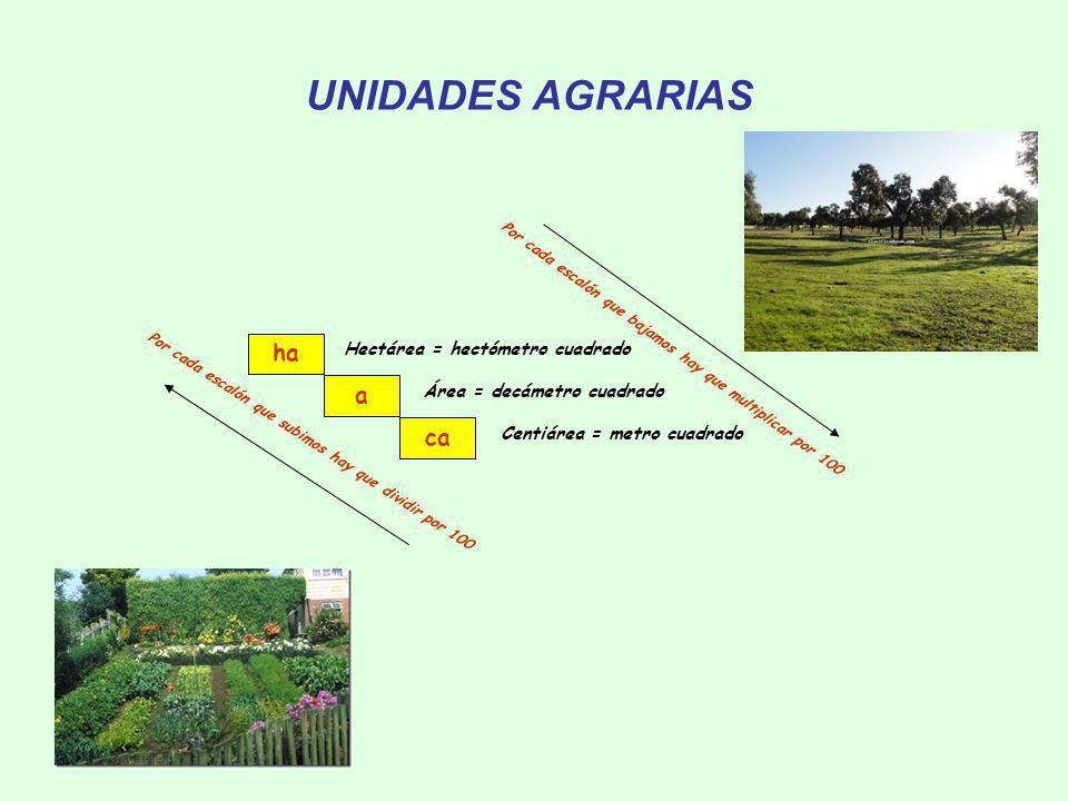 UNIDADES AGRARIAS Centiárea = metro cuadrado Por cada escalón que bajamos hay que multiplicar por 100 Por cada escalón que subimos hay que dividir por