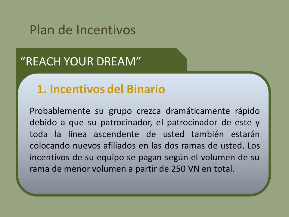 Plan de Incentivos REACH YOUR DREAM Probablemente su grupo crezca dramáticamente rápido debido a que su patrocinador, el patrocinador de este y toda la línea ascendente de usted también estarán colocando nuevos afiliados en las dos ramas de usted.
