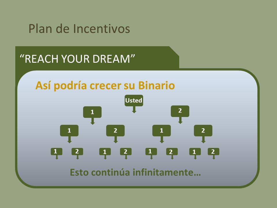 Plan de Incentivos REACH YOUR DREAM Así podría crecer su Binario Usted 1 2 1212 12 1 2 1 2 1 2 Esto continúa infinitamente…