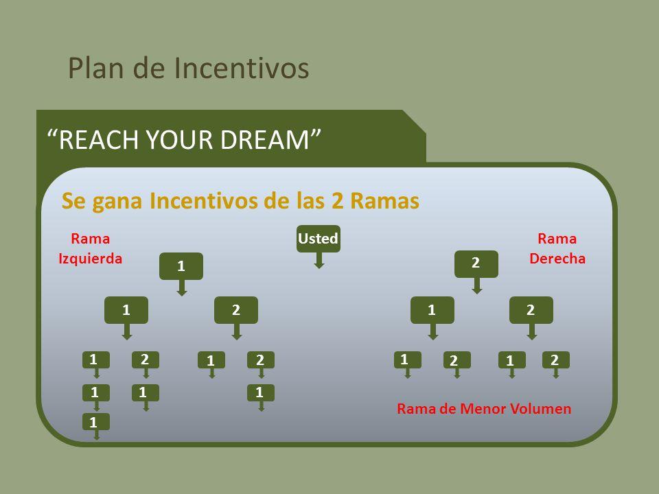 Plan de Incentivos REACH YOUR DREAM Se gana Incentivos de las 2 Ramas Usted 1 2 1212 12 1 2 1 2 1 2 1 1 11 Rama Izquierda Rama Derecha Rama de Menor Volumen