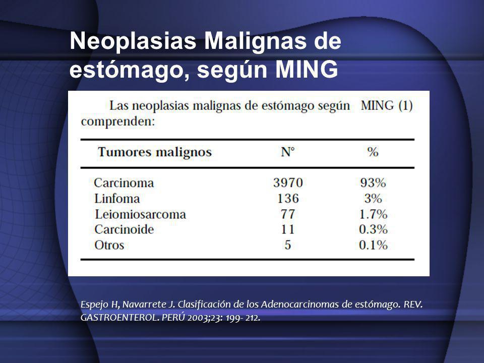 Espejo H, Navarrete J. Clasificación de los Adenocarcinomas de estómago. REV. GASTROENTEROL. PERÚ 2003;23: 199- 212. Neoplasias Malignas de estómago,