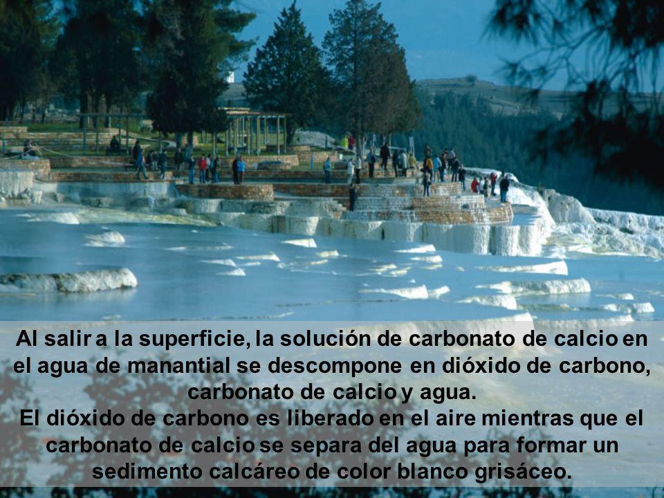 Al salir a la superficie, la solución de carbonato de calcio en el agua de manantial se descompone en dióxido de carbono, carbonato de calcio y agua.