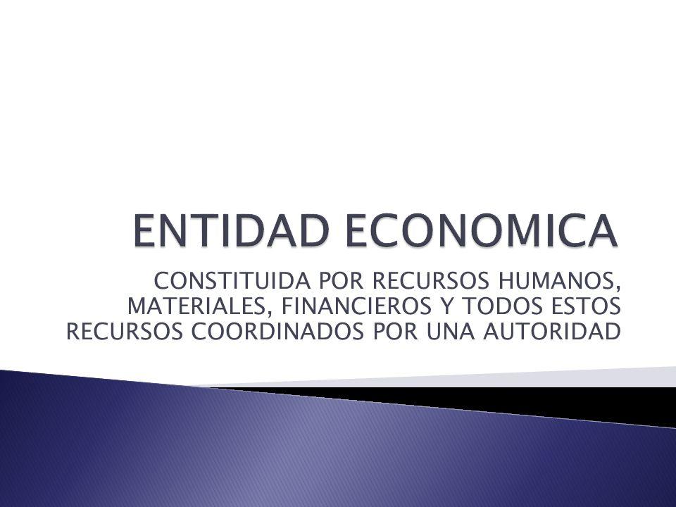 CONSTITUIDA POR RECURSOS HUMANOS, MATERIALES, FINANCIEROS Y TODOS ESTOS RECURSOS COORDINADOS POR UNA AUTORIDAD