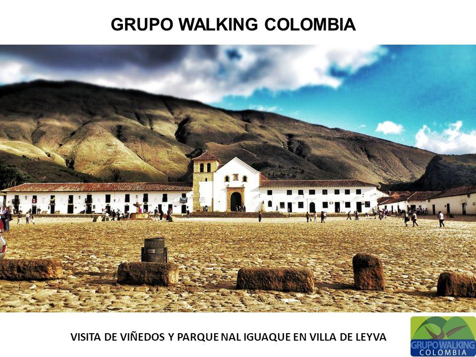 GRUPO WALKING COLOMBIA VISITA DE VIÑEDOS Y PARQUE NAL IGUAQUE EN VILLA DE LEYVA