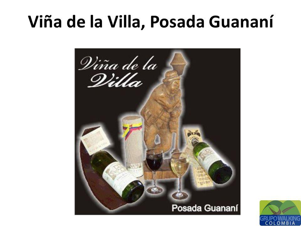Fundado por un alemán hace casi medio siglo, el Viñedo Artesanal Guananí representa la cultura vinícola que ha pasado de generación en generación.