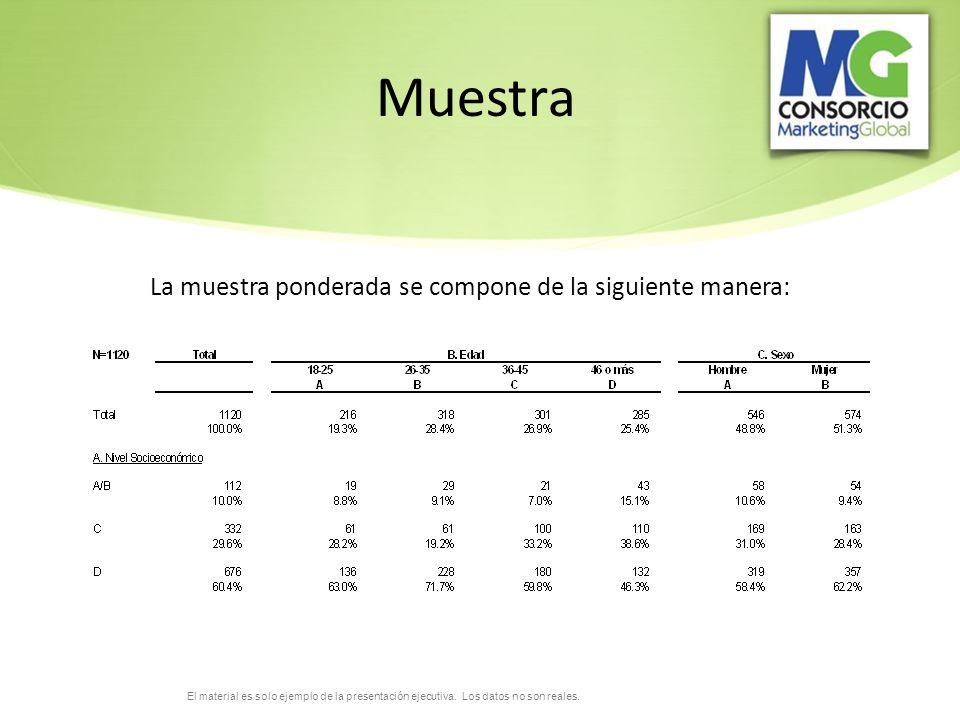 El material es solo ejemplo de la presentación ejecutiva. Los datos no son reales.