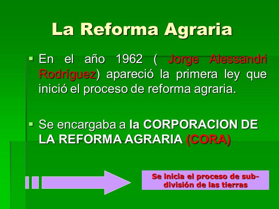 La Reforma Agraria En el año 1962 ( Jorge Alessandri Rodríguez) apareció la primera ley que inició el proceso de reforma agraria. En el año 1962 ( Jor