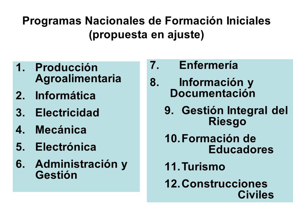 Programas Nacionales de Formación Iniciales (propuesta en ajuste) 1.Producción Agroalimentaria 2.Informática 3.Electricidad 4.Mecánica 5.Electrónica 6