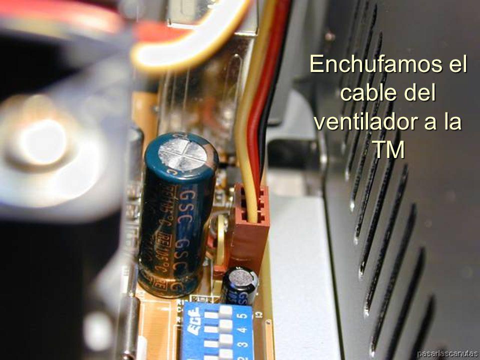 ENSAMBLAJE Y MANTENIMIENTO DE COMPUTADORAS ENSAMBLAJE DE COMPUTADORA UNIVERSIDAD CATOLICA BOLIVIANA SAN PABLO GESTIÓN - 2006 Parte articulada enganchada al Zócalo
