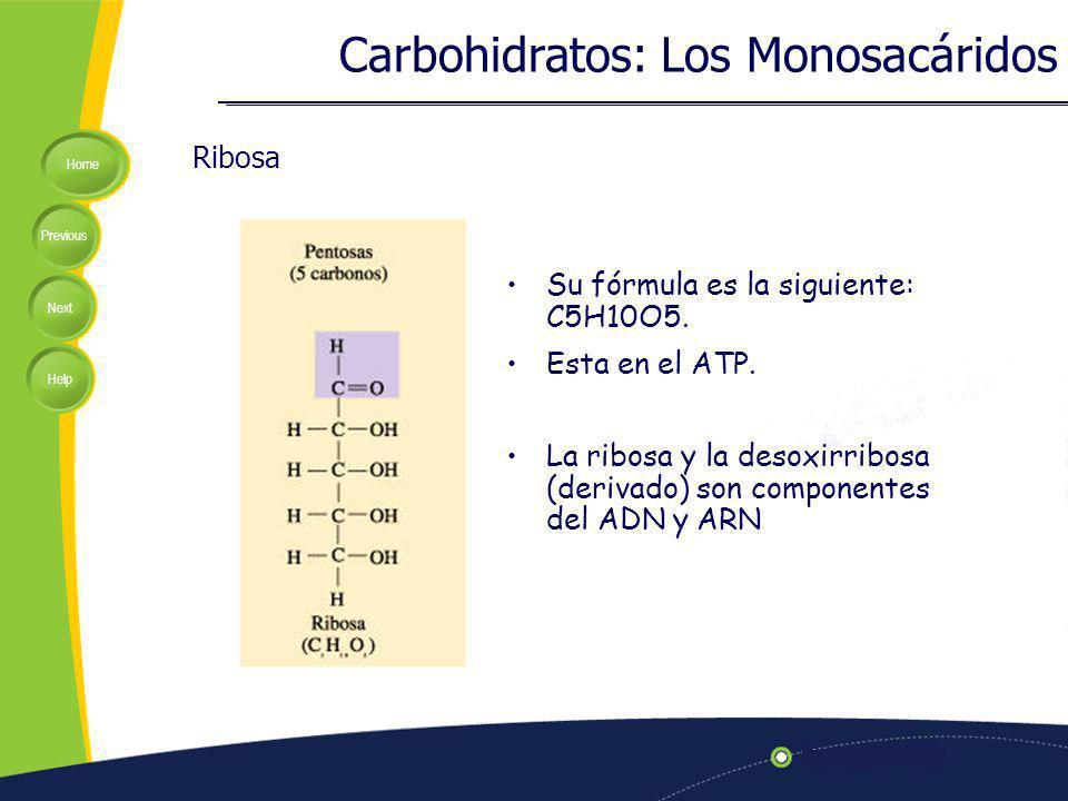 Home Previous Next Help Ribosa Su fórmula es la siguiente: C5H10O5. Esta en el ATP. La ribosa y la desoxirribosa (derivado) son componentes del ADN y
