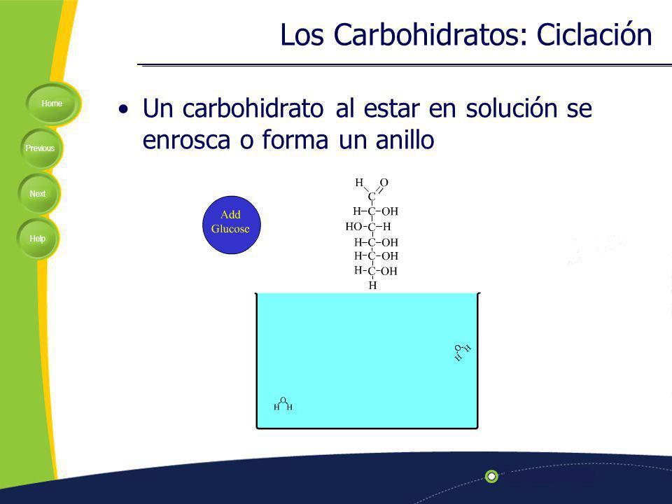 Home Previous Next Help Un carbohidrato al estar en solución se enrosca o forma un anillo Los Carbohidratos: Ciclación