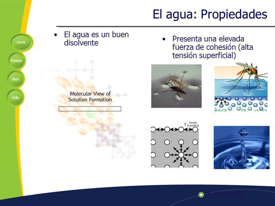Home Previous Next Help El agua es un buen disolvente El agua: Propiedades Presenta una elevada fuerza de cohesión (alta tensión superficial)