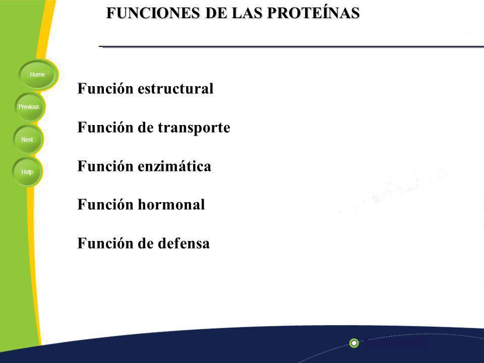 Home Previous Next Help FUNCIONES DE LAS PROTEÍNAS Función estructural Función de transporte Función enzimática Función hormonal Función de defensa
