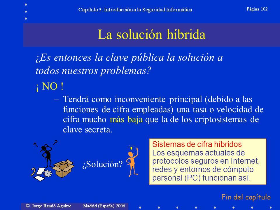 © Jorge Ramió Aguirre Madrid (España) 2006 Página 102 Capítulo 3: Introducción a la Seguridad Informática –Tendrá como inconveniente principal (debido