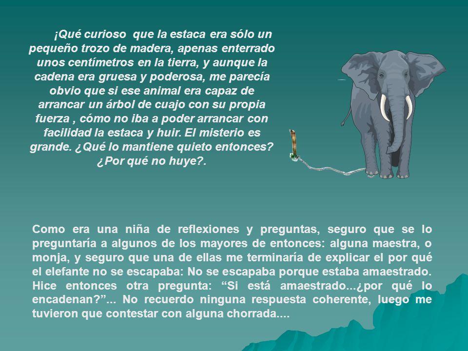 Con el tiempo, me olvidé del misterio del elefante y la estaca...y sólo lo recordaba cuando me encontraba con otras personas que también se habían hecho la misma pregunta.