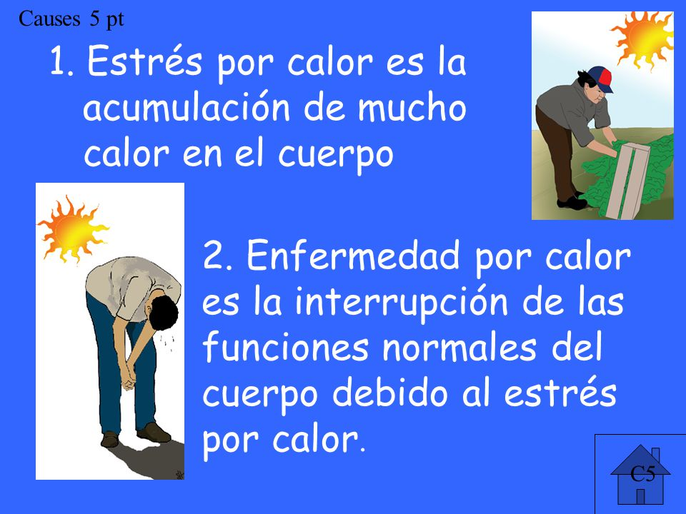 Causes 5 pt 1. Estrés por calor es la acumulación de mucho calor en el cuerpo 2. Enfermedad por calor es la interrupción de las funciones normales del