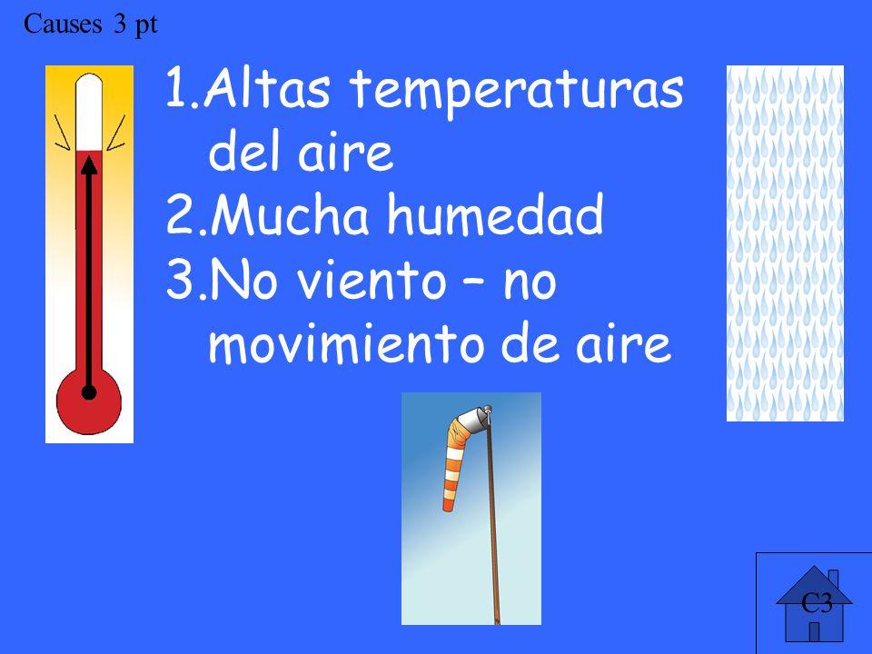 C3 Causes 3 pt 1.Altas temperaturas del aire 2.Mucha humedad 3.No viento – no movimiento de aire
