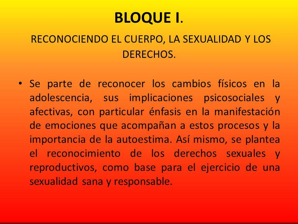 BLOQUE II.