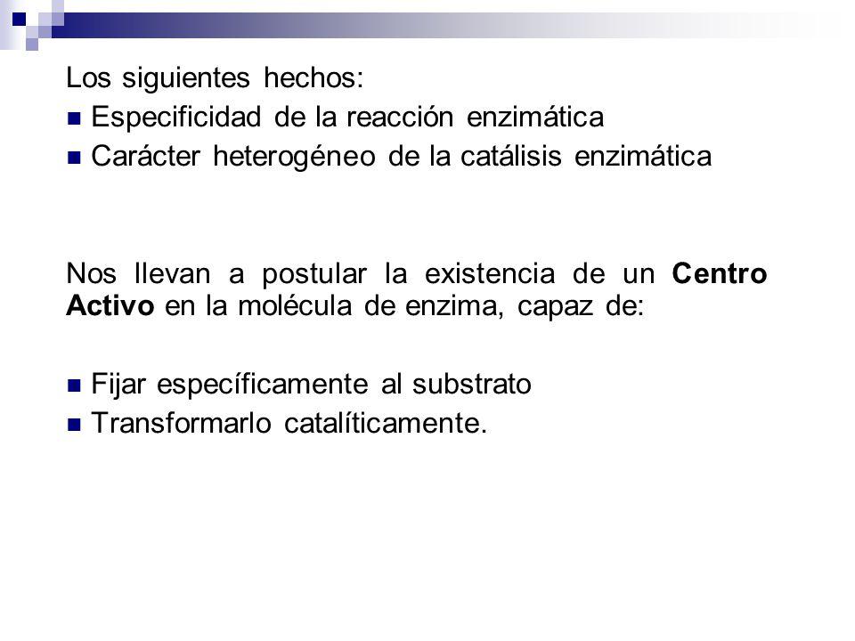 Los siguientes hechos: Especificidad de la reacción enzimática Carácter heterogéneo de la catálisis enzimática Nos llevan a postular la existencia de