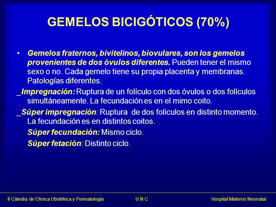 GEMELOS BICIGÓTICOS (70%) Gemelos fraternos, bivitelinos, biovulares, son los gemelos provenientes de dos óvulos diferentes. Pueden tener el mismo sex