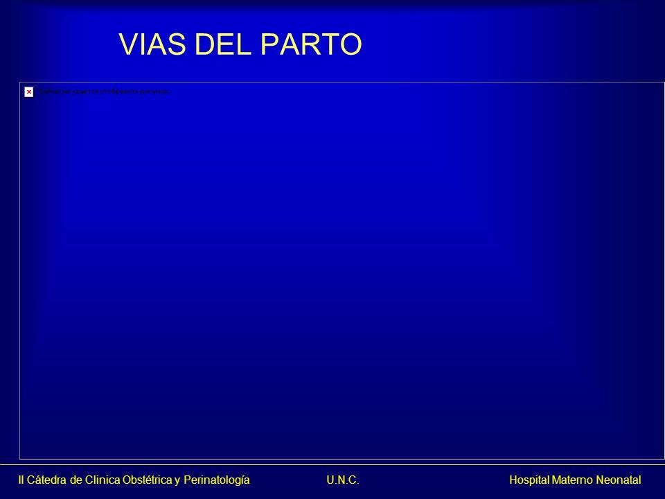 II Cátedra de Clinica Obstétrica y Perinatología U.N.C. Hospital Materno Neonatal VIAS DEL PARTO