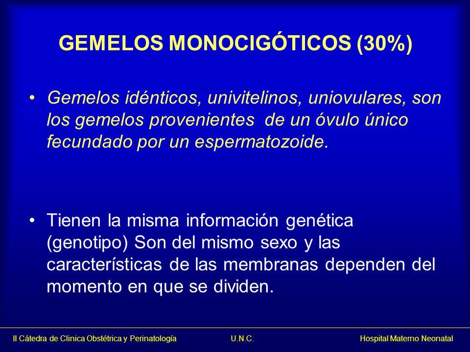 II Cátedra de Clinica Obstétrica y Perinatología U.N.C. Hospital Materno Neonatal GEMELOS MONOCIGÓTICOS (30%) Gemelos idénticos, univitelinos, uniovul