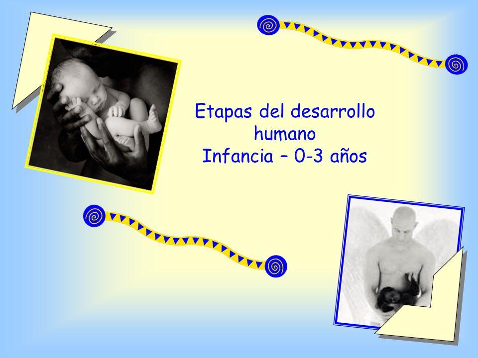 Etapas del desarrollo humano Infancia – 0-3 años