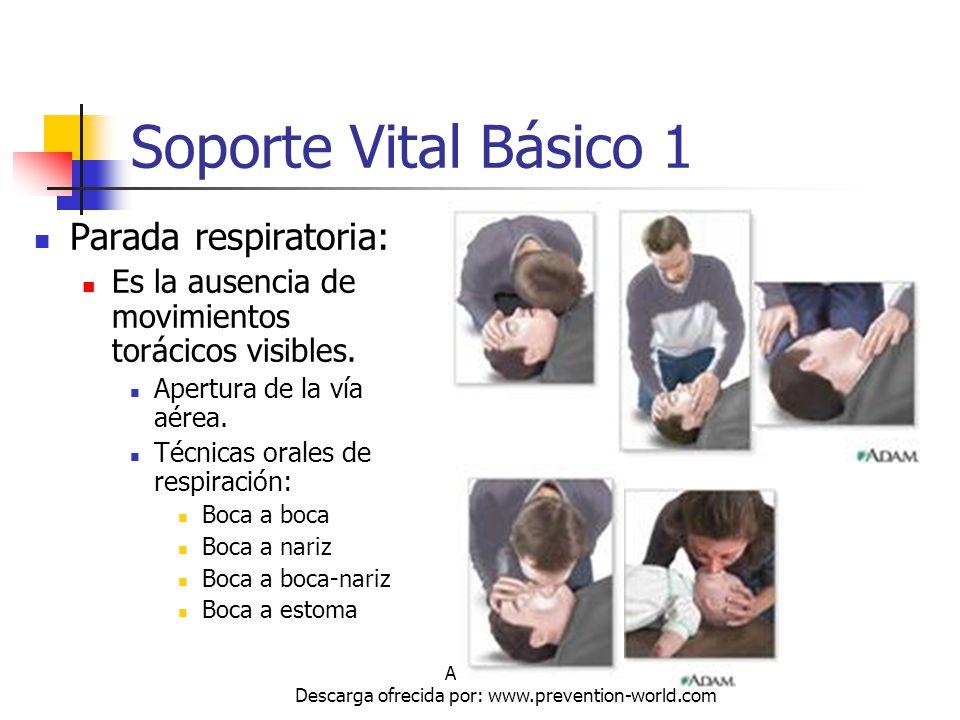 Autor: Mdaniel Descarga ofrecida por: www.prevention-world.com Soporte Vital Básico 1 Parada respiratoria: Es la ausencia de movimientos torácicos vis