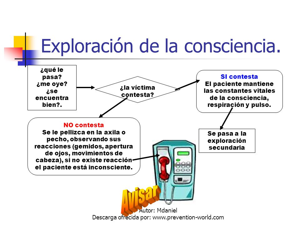 Autor: Mdaniel Descarga ofrecida por: www.prevention-world.com Luxaciones.