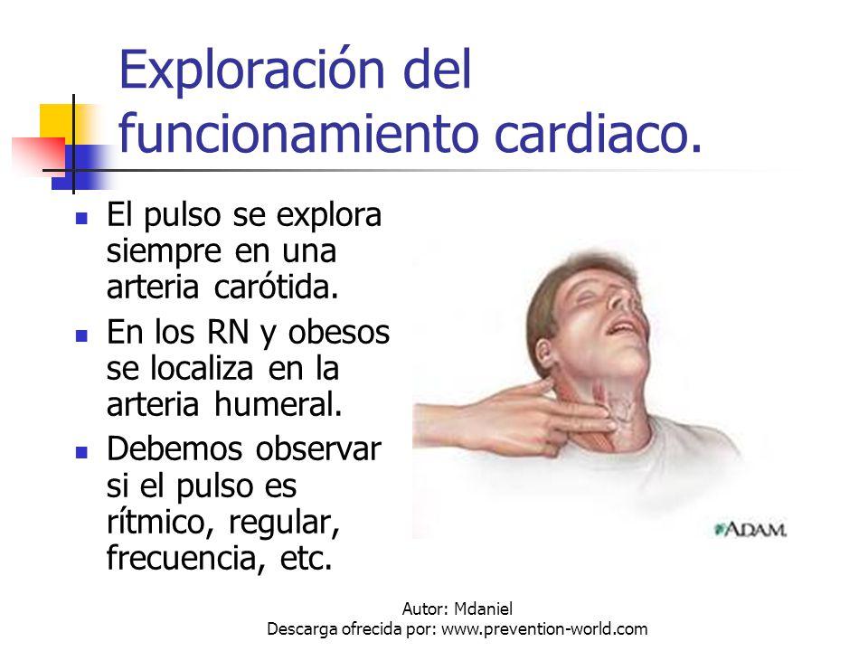 Autor: Mdaniel Descarga ofrecida por: www.prevention-world.com Exploración del funcionamiento cardiaco. El pulso se explora siempre en una arteria car