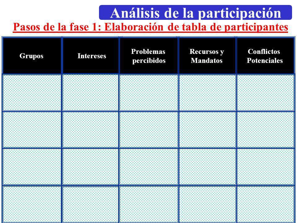 Dirección General de Relaciones Internacionales Octubre, 2002 Pasos de la fase 1: Elaboración de tabla de participantes Conflictos Potenciales Recurso