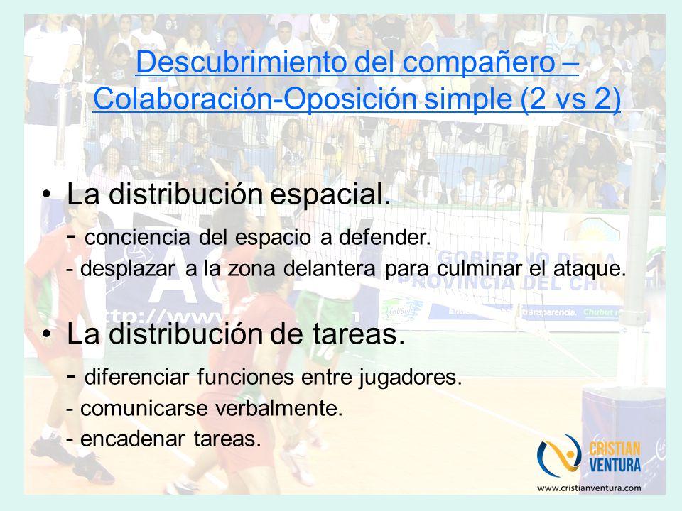 Descubrimiento del compañero – Colaboración-Oposición simple (2 vs 2) La distribución espacial.