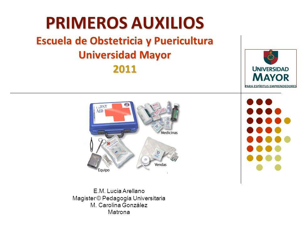 Aspectos Generales de la Asignatura Docentes: Lucia Arellano Gramunt.