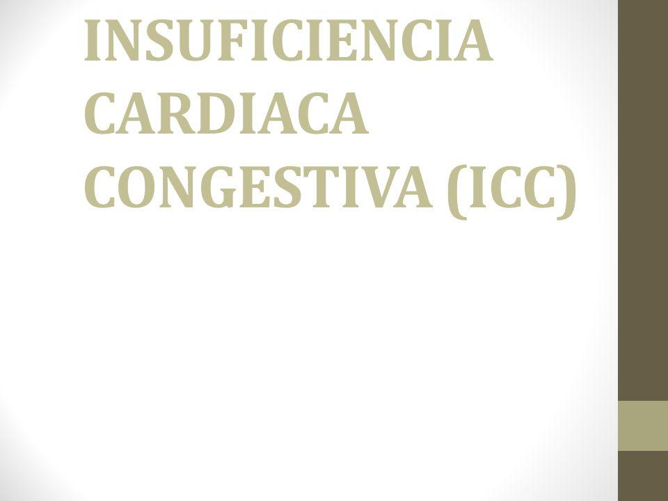 CORAZON El corazón es un órgano importante del cuerpo que se encarga de bombear continuamente la sangre que le proporciona al cuerpo nutrientes y oxígeno.