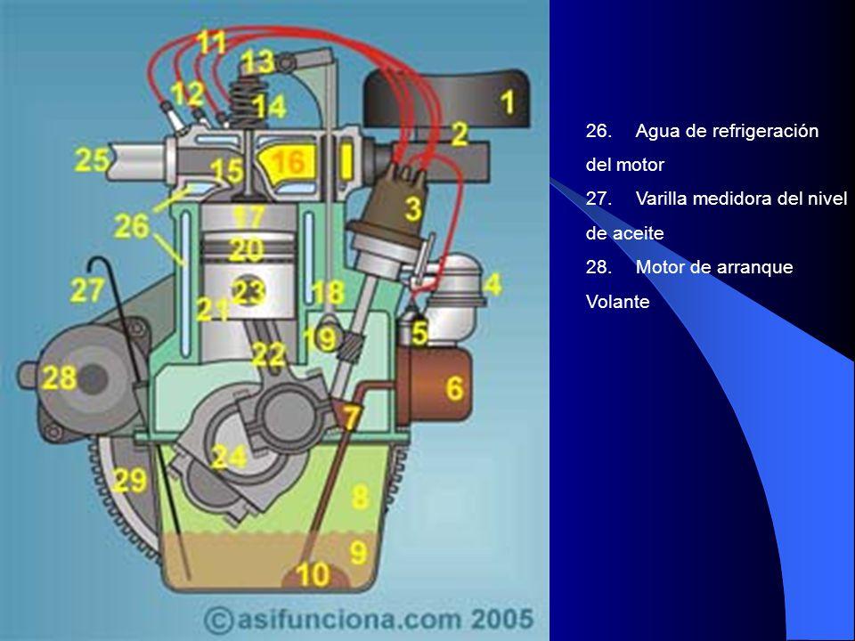 26.Agua de refrigeración del motor 27. Varilla medidora del nivel de aceite 28.