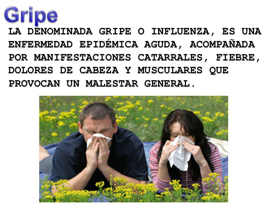 LA DENOMINADA GRIPE O INFLUENZA, ES UNA ENFERMEDAD EPIDÉMICA AGUDA, ACOMPAÑADA POR MANIFESTACIONES CATARRALES, FIEBRE, DOLORES DE CABEZA Y MUSCULARES