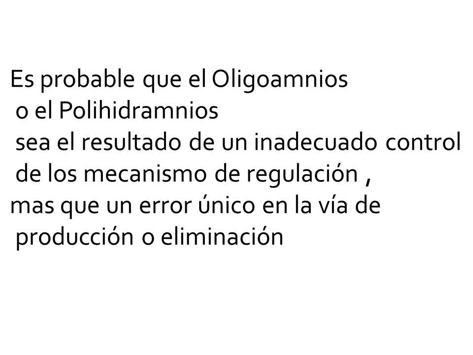 Es probable que el Oligoamnios o el Polihidramnios sea el resultado de un inadecuado control de los mecanismo de regulación, mas que un error único en la vía de producción o eliminación