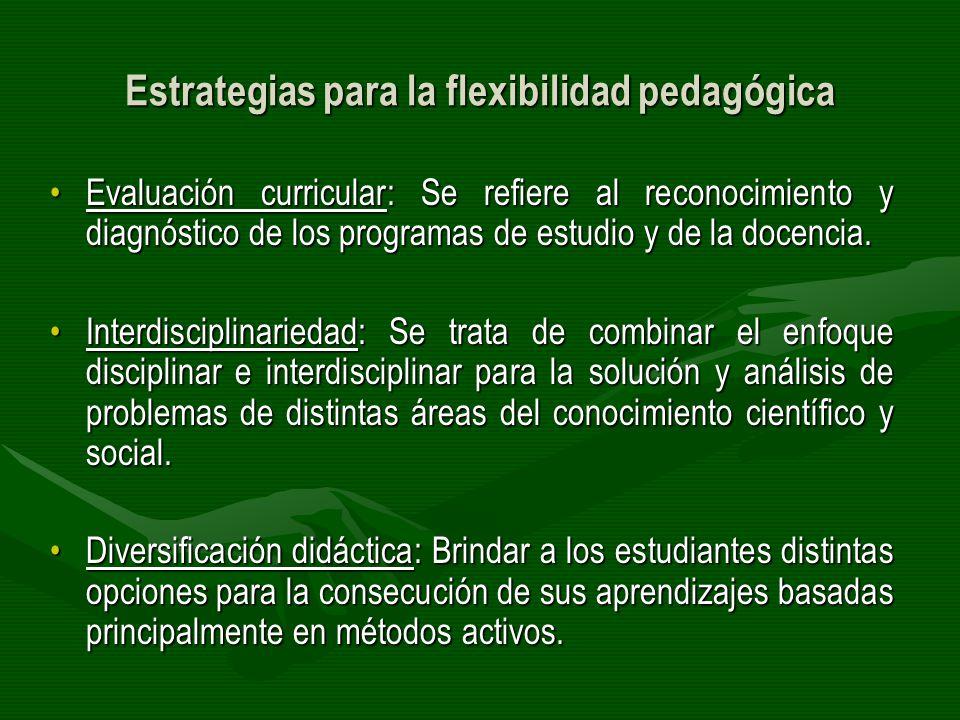Estrategias para la flexibilidad pedagógica Evaluación curricular: Se refiere al reconocimiento y diagnóstico de los programas de estudio y de la doce