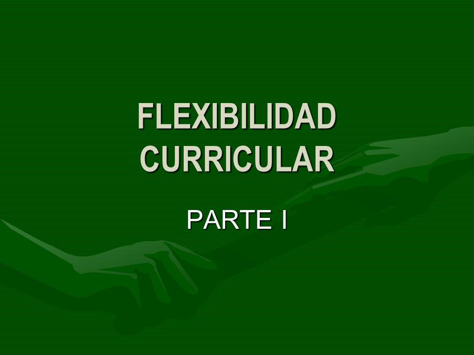 FLEXIBILIDAD CURRICULAR PARTE I