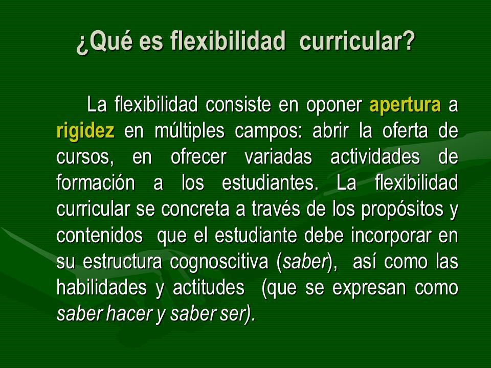 Tipos de flexibilidad curricular para la flexibilidad del profesional La flexibilidad pedagógica.La flexibilidad pedagógica.