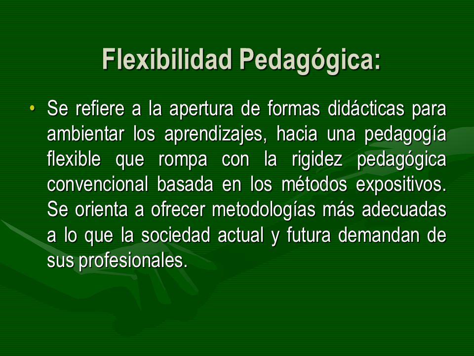Flexibilidad Pedagógica: Se refiere a la apertura de formas didácticas para ambientar los aprendizajes, hacia una pedagogía flexible que rompa con la