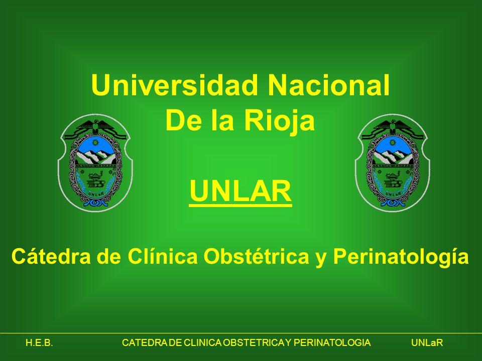 H.E.B.CATEDRA DE CLINICA OBSTETRICA Y PERINATOLOGIAUNLaR Universidad Nacional De la Rioja UNLAR Cátedra de Clínica Obstétrica y Perinatología